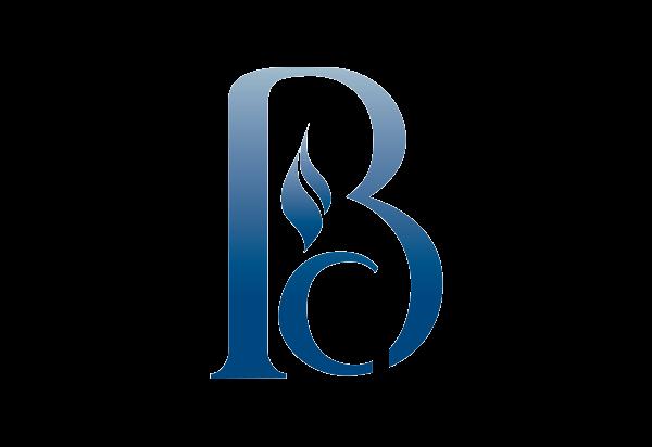Financial company logo design - BlueChip